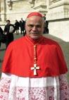 Kardinal Saraiva Martins
